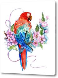 Постер Попугай на ветке, попугай ара