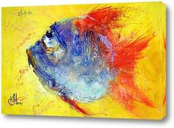 Постер Рыбка