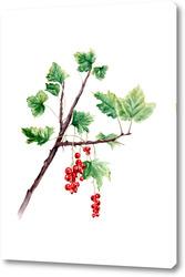 Картина Красная смородина