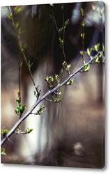 Постер Цветение листыв №3