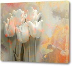 Постер Белые тюльпаны