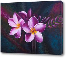Картина Цветки Плюмерии в темном