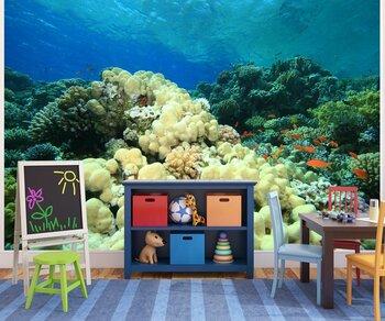 Фотообои Coral-05011017