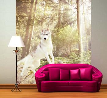 Фотообои Белоснежный волк